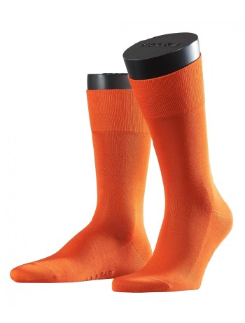 Falke Tiago Men's Socks topaz mel.