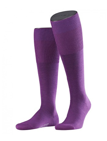 Falke Airport Men's Knee High Socks petunia
