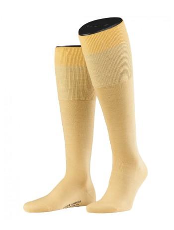 Falke Airport Men's Knee High Socks sun flower