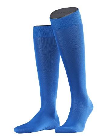 Falke Tiago Men's Knee High Socks matisse/olympic