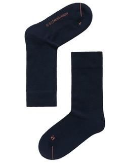 Hudson Balance Socks